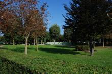 Parco pubblico zona centrale Saccolongo