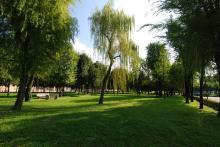 Parco pubblico Saccolongo